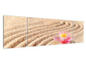 Obraz kameňa s kvetinou na piesku (V020864V17050)