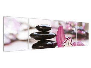 Obraz masážních kamenů a orchidee (V020910V17050)