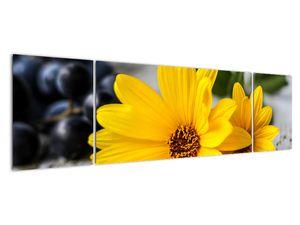 Obraz žluté květiny (V020952V17050)