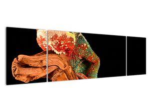 Obraz chameleona na větvi (V021125V17050)