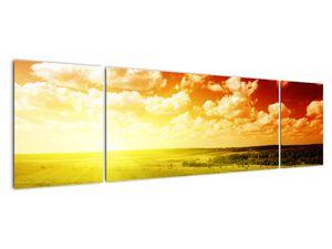 Obraz lúky so žiariacim slnkom (V021174V17050)