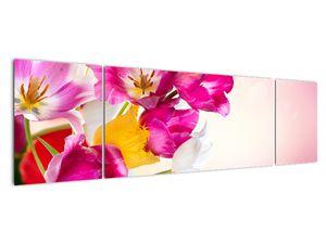 Obraz tulipánov (V021295V17050)