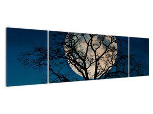 Obaz stromu s úplňkem (V021355V17050)