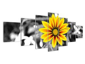 Obraz žluté květiny (V020361V210100)