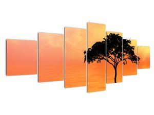 Obraz stromu v západu slunce (V020480V210100)