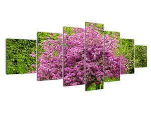 Obraz rozkvetlého stromu na louce (V020654V210100)
