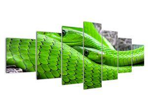 Obraz zelených hadů (V020689V210100)