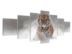 Obraz bežiaceho tigra v snehu (V020719V210100)