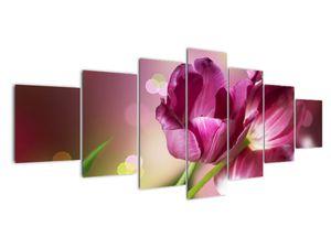 Obraz růžových tulipánů (V020887V210100)
