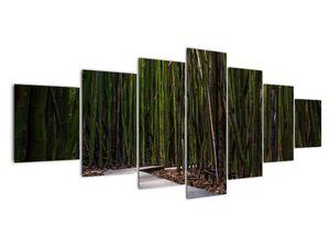 Obraz - Medzi bambusy (V021324V210100)