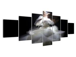 Lótuszvirág képe (V021597V210100)