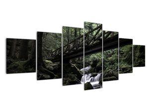 Obraz z černého lesa (V021686V210100)