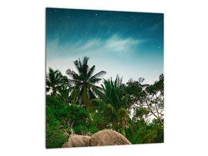 Tablou - palmierii (V020239V3030)
