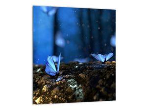 Obraz modrých motýlů (V020434V3030)