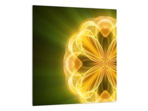 Obraz žluté květiny (V020451V3030)