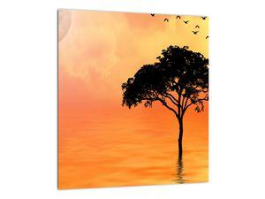 Obraz stromu v západu slunce (V020480V3030)