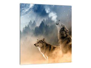 Obraz - vlci vyjící na měsíc (V020509V3030)