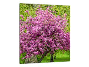Obraz rozkvetlého stromu na louce (V020654V3030)