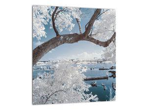Obraz zasněženého stromu u vody (V020718V3030)