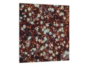 Obraz květiny Pomněnka lesní (V020811V3030)
