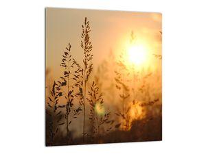 Obraz východu slunce (V020870V3030)