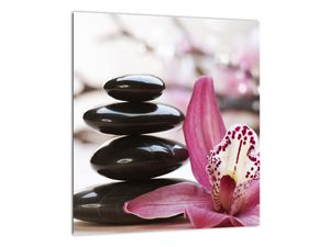 Obraz masážních kamenů a orchidee (V020910V3030)