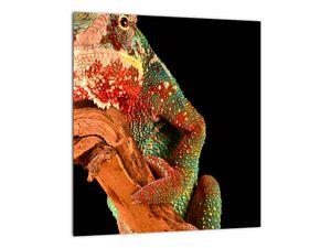 Obraz chameleona na větvi (V021125V3030)