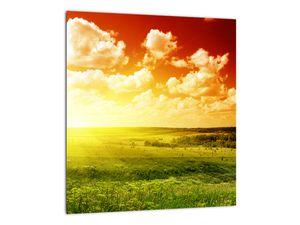 Obraz lúky so žiariacim slnkom (V021174V3030)