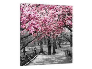 Obraz stromů Magnolíie (V021344V3030)