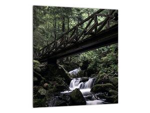 Obraz z černého lesa (V021686V3030)