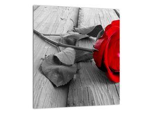 Slika rdeče vrtnice (V022288V3030)