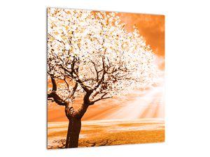 Oranžový obraz stromu (V020095V4040)