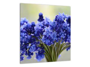 Obraz kytice modrých květů (V020175V4040)
