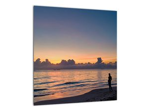 Kép egy nőről a tengerparton (V020204V4040)