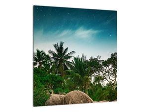 Tablou - palmierii (V020239V4040)