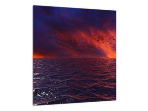Obraz moře s ptáky (V020351V4040)