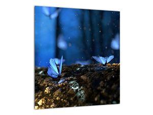 Obraz modrých motýlů (V020434V4040)