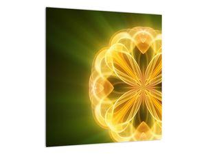 Obraz žluté květiny (V020451V4040)