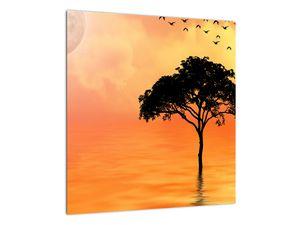 Obraz stromu v západu slunce (V020480V4040)