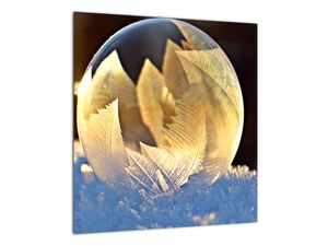 Kép - fagyott buborékok (V020519V4040)