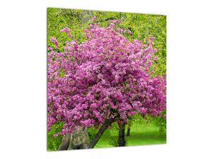 Obraz rozkvetlého stromu na louce (V020654V4040)