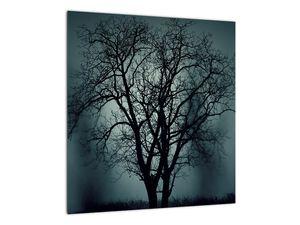 Obraz stromu v zatmění (V020675V4040)
