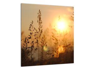Obraz východu slunce (V020870V4040)