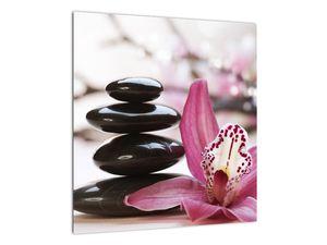 Obraz masážních kamenů a orchidee (V020910V4040)