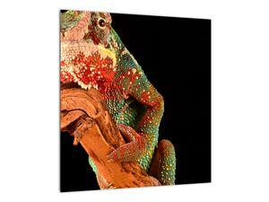 Obraz chameleona na větvi (V021125V4040)