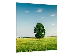 Obraz stromu na louce (V021171V4040)