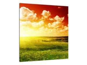 Obraz louky se zářícím sluncem (V021174V4040)