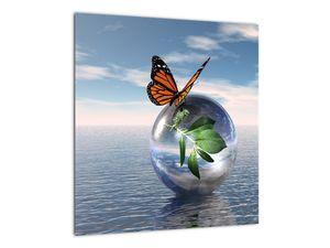 Obraz motýla na skleněné kouli (V021198V4040)