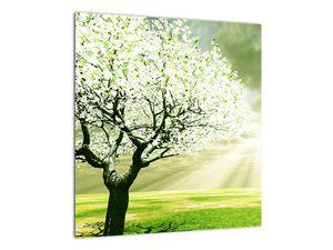 Obraz stromu na lúke (V021282V4040)
