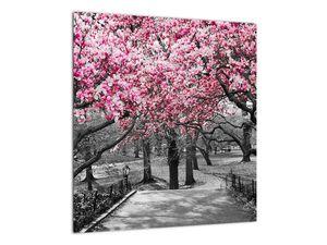Obraz stromů Magnolíie (V021344V4040)